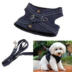 Jocestyle Puppy Cat Small Dog Vest Harness Leash Set Canvas Traction Rope Lead Walking Traning Tool S Blue -- Click image for more details.Note:It is affiliate link to Amazon.