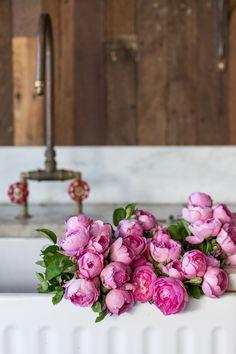My fav roses - David Austin Roses. photo by luisa brimble. My Flower, Fresh Flowers, Beautiful Flowers, Pretty Roses, Flower Ideas, Roses David Austin, Fleurs Diy, Ranunculus, Peony