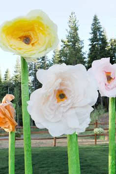 giant paper flowers