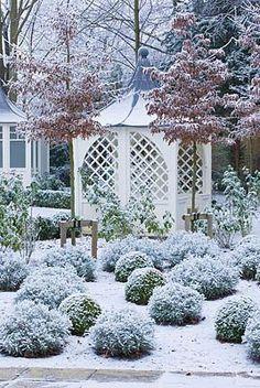 「winter beautiful garden」の画像検索結果