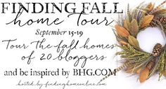 Finding Fall 2014 Button-Corrected