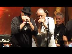 The Legendary Downchild Blues Band on June 2019 On Bloor Street at The Toronto Jazz Festival with Dan Ackroyd Jazz Festival, Blue Band, Dan, Blues, People, Fictional Characters, Fantasy Characters, People Illustration, Folk