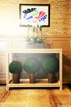 Looking for artificial topiary? You need look no further than our top quality artificial boxwood balls. Kips Bay Showhouse, Roman Garden, Artificial Topiary, Boxwood Topiary, Interior Plants, Interior Design, Amazing Decor, Diy Accessories, Beautiful Homes