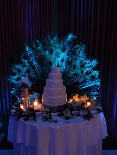Peacock feathers and uplighting behind the wedding cake
