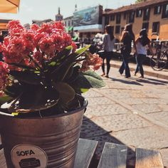 #coffeetime sui #Navigli #Milano #Milan #milanocity #milanodavedere #milanodaclik #igers #igersmilano #ig_italy #ig_italia #flowers #city #street #urban #may #lombardia #nature #foto_italiane #photo # #break #relax #Sun #spring by giuseppebellarosa