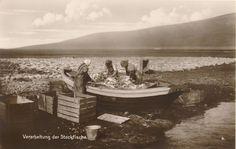 Trinks-Bildkarte: 2 x Torshavn + 1 x Der Stockfische Postcards, Painting, Picture Cards, Painting Art, Paintings