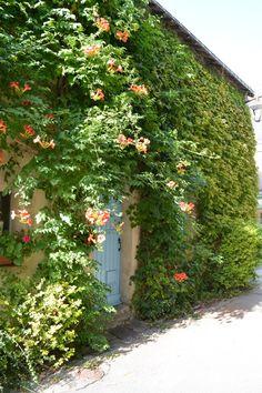 18-guerande-maison-vegetale