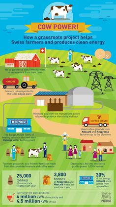 Find out how a grassroots project helps Swiss farmers and produces clean energy. Health And Nutrition, Health And Wellness, Healthy Food, Healthy Eating, Cold Pressed Juice, Grain Foods, Food Safety, Food Facts, Supply Chain