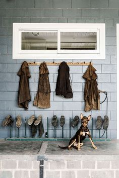 A kelpie sits in front of an outdoor boot and coat rack at a renovated bluestone homestead in Teesdale, VIC | Photography: Marnie Hawson | Styling: Belle Hemming Bright Fifth Generation, Texture Design, Storage Shelves, Homesteading, Farmhouse, Color, Home Decor, Storage Racks, Decoration Home