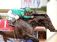 HONOR CODE, in his first start of 2015, mowed down the front-runners with a strong rally to capture the $300,000 Gulfstream Park Handicap (gr. II) March 7