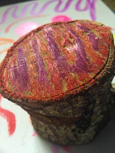 Kwik Stix Paint Sticks in NEON