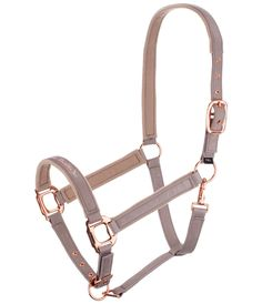 Riding Accessories and Equestrian Products Horse Harness, Harness Racing, Horse Stables, Horse Tack, Equestrian Outfits, Equestrian Style, Horse Fashion, Horse Accessories, Horse Supplies