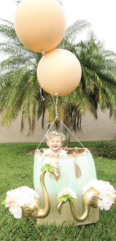 Hot Air Balloon, Flamingo First Birthday Brunch