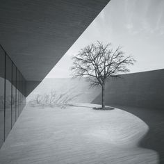 Best Future Building of the Year - Drawing Board: MZ Architects, The Ring House, Riyadh, S...