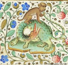 Monkey seated atop dragon, biting the tip of the dragon's tail | Book of Hours | France, Paris | ca. 1460 | The Morgan Library & Museum