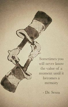 Sometimes you will never know the value of a moment until it becomes a memory  ~Dr. Seuss