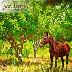 ¿Cuántos se dieron cuenta que era una #Pintura a primera vista? #Talabarteria #SanFermin