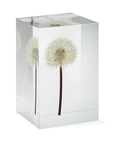 Dandelion+Objet+D'Art+MoMA+Exclusive/MoMA+Best+Seller