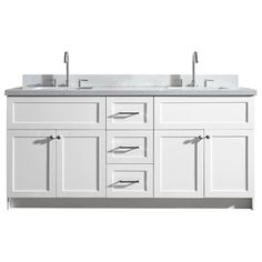 Ariel Hamlet 73 In. Double Sink Vanity With Quartz Countertop In