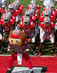 Brutus The Buckeye With The Ohio State University Football Team . Buckeyes Football, Ohio State Football, Ohio State University, Ohio State Buckeyes, College Football, Football Team, Buckeye Sports, American Football, Ohio Stadium