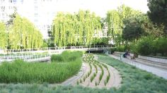 Jardin Atlantique, a park and garden located on the roof of the Gare Montparnasse railway station in Paris