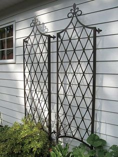 The Scroll Wall Trellis is an artful display and the perfect