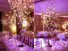 Orchid head tree arrangements.  www.caughtthelight.co.uk    If I get to splurge....