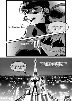 Always darkness where light is ~ ladynoir part 2