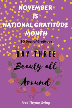 Gratitude Day, Practice Gratitude, Gratitude Quotes, Think Positive Quotes, Happy Quotes, Love Quotes, Writing Prompts, Journal Prompts, Thanks Words