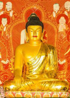 Korean Shakymuni Hawai'i BUDDHAS : More At FOSTERGINGER @ Pinterest Buddha Statues, Gautama Buddha, Conscience, Buddhist Art, Buddhism, Stability, Knowledge, Lord, Korean
