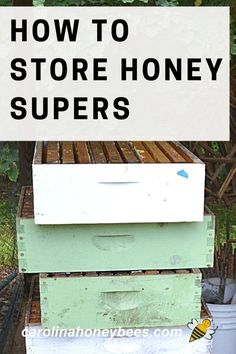Wax Moth, How To Start Beekeeping, Honey Store, Bee Hive Plans, Beekeeping Equipment, Backyard Beekeeping, Birds And The Bees, Bee Friendly, Save The Bees