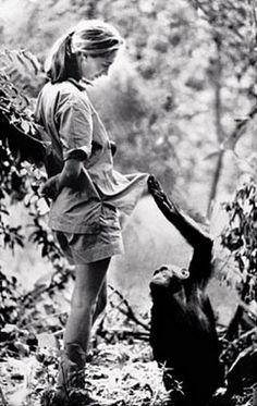 jane goodall - Bing Images