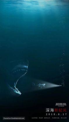 900 Fantastiche Immagini Su Shark Jaws Sharks Great White Shark E