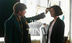 Newt and Tina, Fantastic Beasts and Where to Find Them