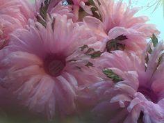 Forminhas para doces finosObra de Arte: Forminha crisantemo,um luxo!!!