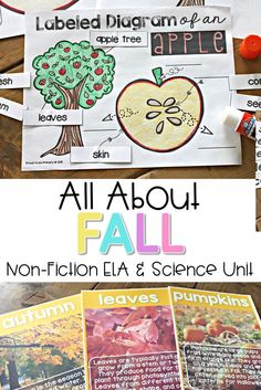 Looking for the perfect fall resource for primary? Check out the engaging fall science and non-fiction classroom activities for kids about leaves, pumpkins, and apples!  You won't want to miss the science experiments! #fallscience #fallactivities #leafactivities #pumpkinscience #applescience