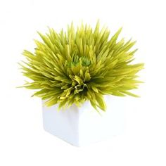 """Faux spider mum blossom in ceramic cube vase.   Product: Faux floral arrangementConstruction Material: Ceramic and silkColor: Green and whiteFeatures: Includes faux spider mumsDimensions: 7"""" H x 6"""" W"""