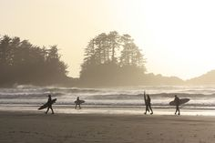Tofino, BC - The last time I was there I had scene just like this.a line of surfers heading to the water! Places In Usa, Oh The Places You'll Go, Places To Visit, Salt Spring Island Bc, Tofino Bc, Vancouver Island, British Columbia, Adventure Travel, Surfing