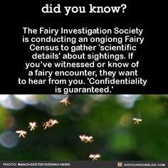 did you know? - The Fairy Investigation Society is conducting an...