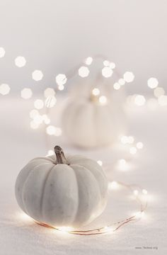 White mini pumpkins and string lights
