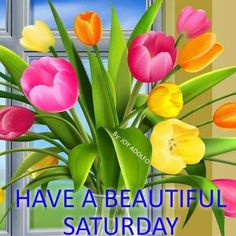 Saturday Greetings, Puzzle, Good Morning, Blessed, Joy, Plants, Beautiful, Blessings, Inspirational