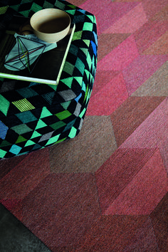 The World Market for Tufted Textile Floor Coverings of Nylon or Other Polyamides: A 2011 Global Trad
