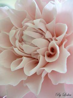 leslea matsis cakes - wedding - wedding cake - pink dahlia