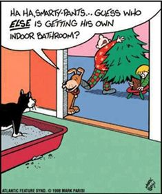 Haha...we always worry about our male dog doing this when we bring the tree home!