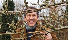 Time to get trim: Flowering shrubs and fruit trees can be cut back now (end of January).
