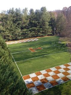 That Big Orange checkerboard in your back yard!
