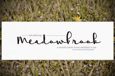 Meadowbrook Fonts Meadowbrook is a smooth weighted script with an even-flowing, calming feel. Great for cards or weddi by Brittney Murphy Design Handwritten Script Font, Cursive Fonts, Script Type, Handwriting Fonts, Typography Fonts, Hand Lettering, Business Brochure, Business Card Logo, Tatoo Letter