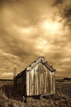 sepia shack