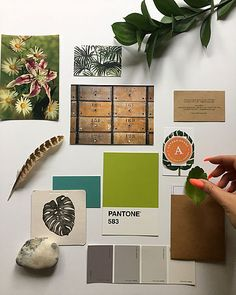 Nicki Grainger is a freelance brand stylist helping small businesses develop brand identity and visual storytelling, both online and off.    #brandstyling #branding #brandstylist #moodboard