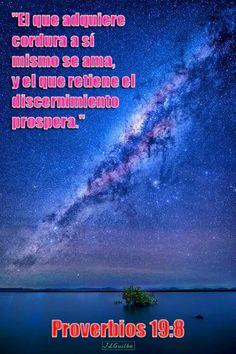 """- Proverbios 19:8 - """"El que adquiere cordura a sí mismo se ama, y el que retiene el discernimiento prospera."""""""